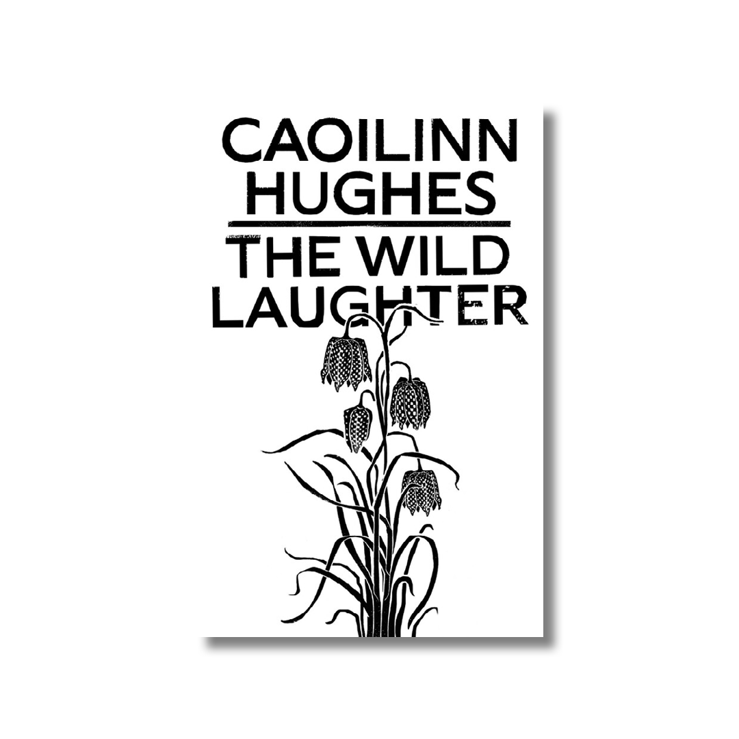 Cover of Caoilinn Hughes's The Wild Laughter.