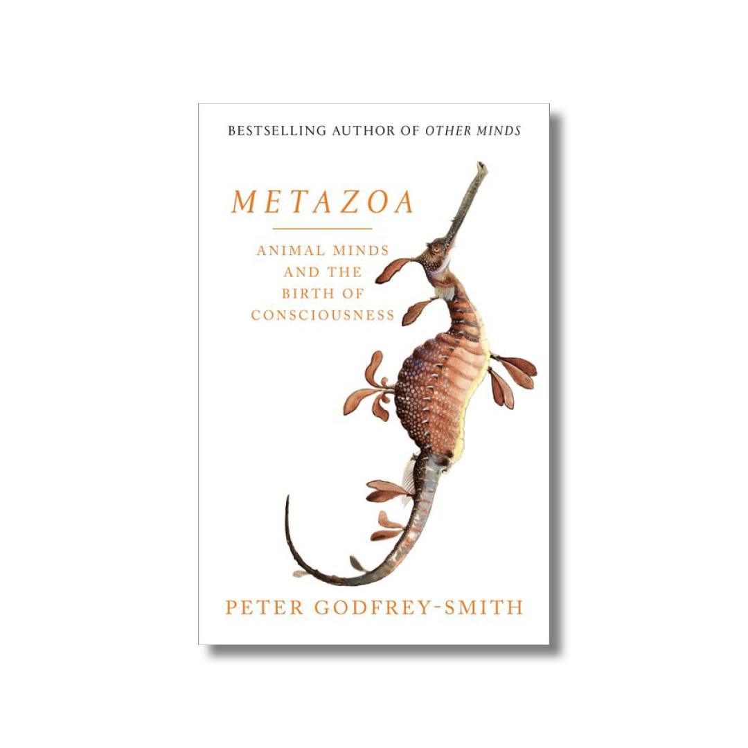 Cover of Peter Godfrey-Smith's Metazoa
